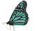 papillon_monarque_small